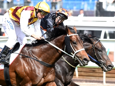 Preferment Wins the Victoria Derby