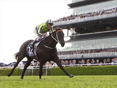 Jockey Damien Oliver rides Lucia Valentina to victory