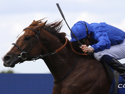 Hawkbill ridden by William Buick