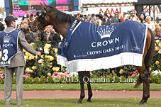 Kirramosa and Crown Oaks rug