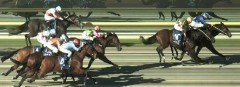 Brookwater wins at Pakenham 17/07/16